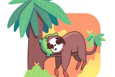 slothino blog sleeping in a tree