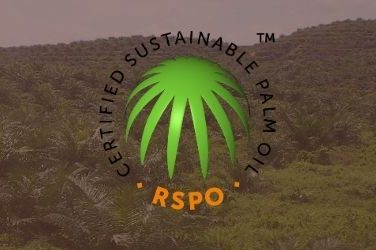 slothino blog about palm oil production and deforestation