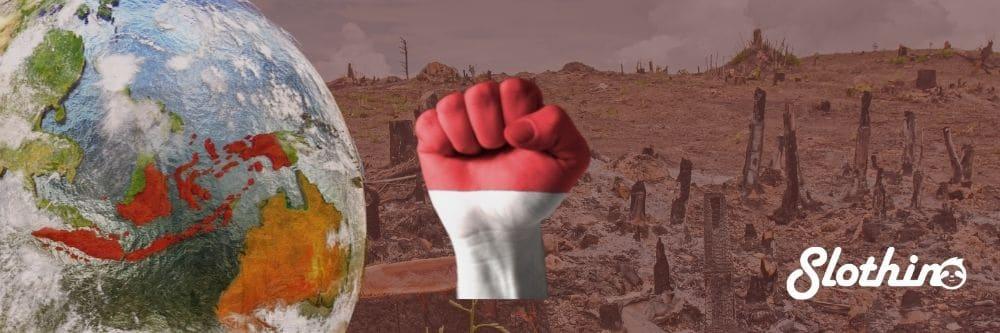 Blog Slothino deforestation - improvement in Indonesia